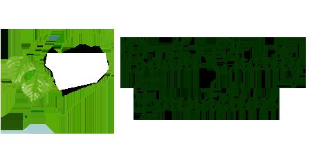 Bodhi Charity Foundation logo